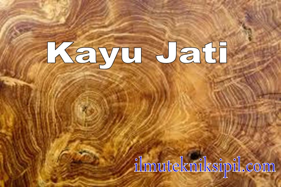 Image Result For Kayu Jati