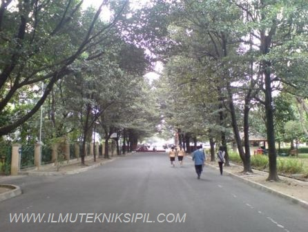 Jalan di bagian selatan bangunan Gedung Pusat ini ditanami pepohonan yang ditata secara simetris untuk menimbulkan kesan seimbang