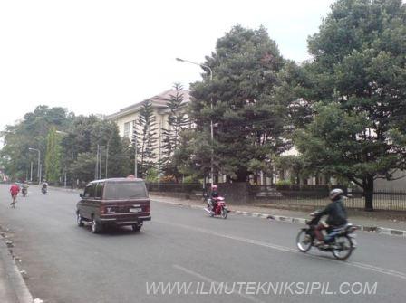 Pepohonan rindang yang terdapat di pinggir Jl. Kaliurang, yang berperan dalam mengeliminir kebisingan yang ditimbulkan dari kendaraan bermotor