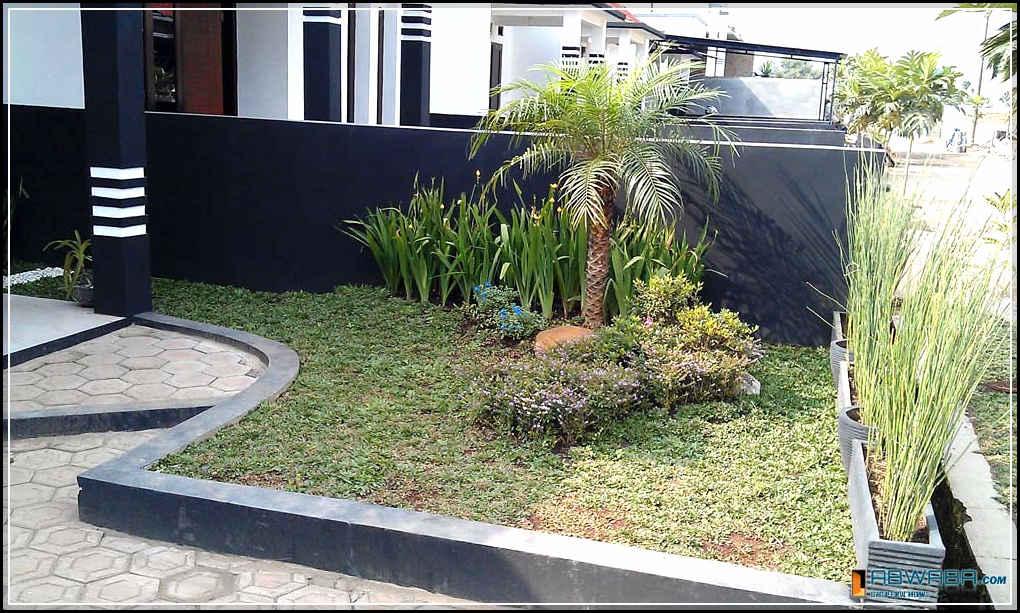 taman minimalis depan rumah-11