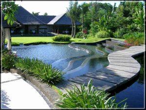 taman rumah minimalis 14