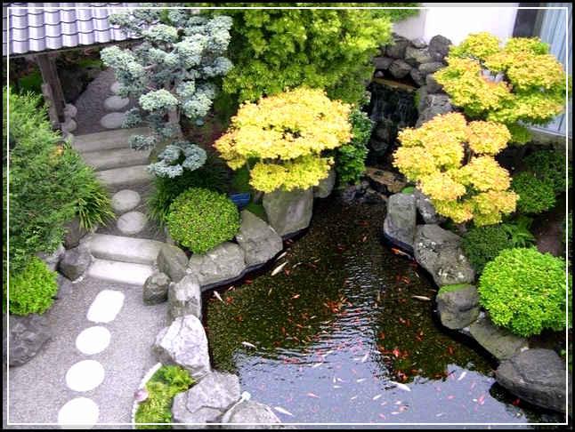 taman rumah minimalis-19
